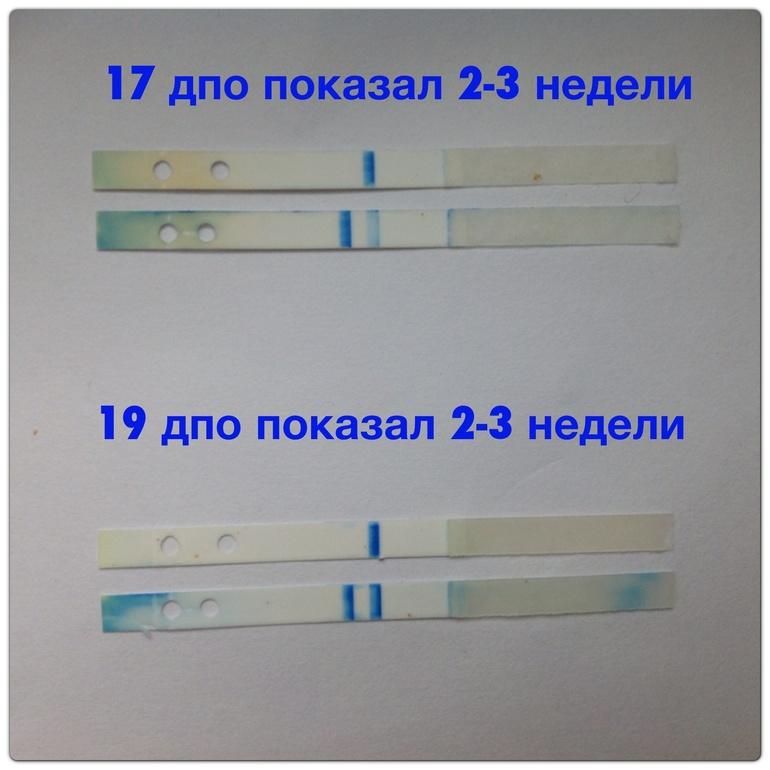 Тест на беременность клеар блю электронный отзывы