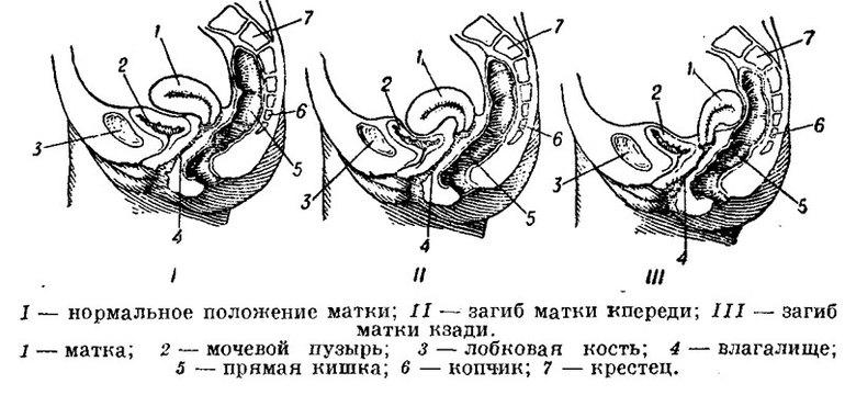 golie-devushki-iz-ishimbaya