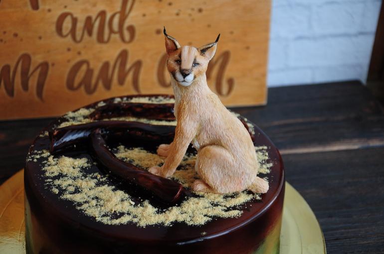 Торт животное своими руками 12