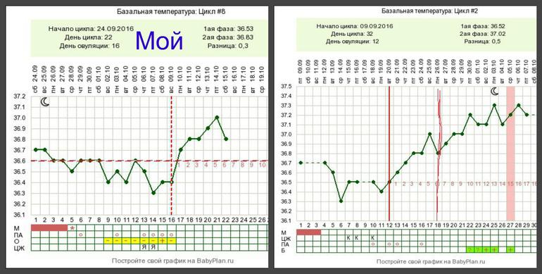 Максимальная температура у беременных на ранних сроках 9