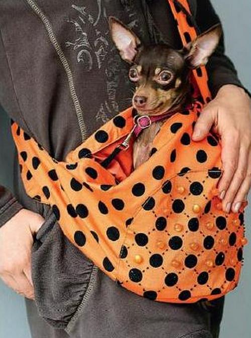 Сумка переноска для мелких собак своими руками