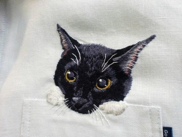 Дресс-кот!