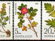 Марки Лекарственные растения Сибири 1985 год СССР