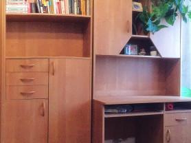 Книжный шкаф, письменный стол
