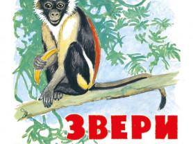 Звери жарких стран (книжка-картинка) Худ. Комаров