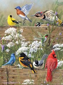 Buffalo Games Hautman Brothers: Songbird Menagerie - 1000