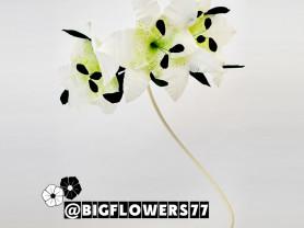 Нежные ростовые лилии из гофрированной бумаги