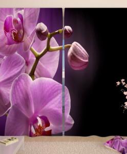 Фотошторы Орхидея в сумраке Габардин