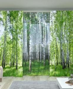 Комплект Березовый лес 2 + Березовая роща Атлас