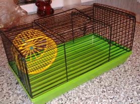 Новая клетка-мини для хомяка с колесом