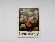 Марка 15к 1982 год СССР Кизил