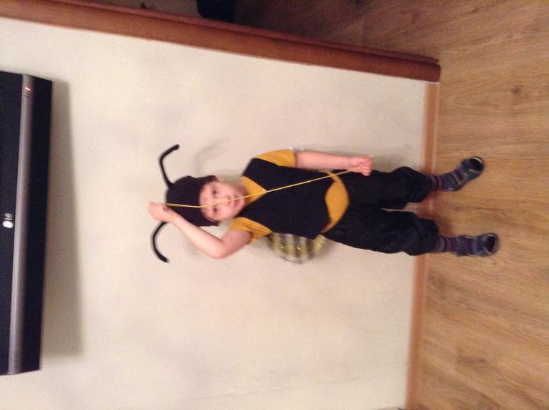Крылья жука для мальчика своими руками