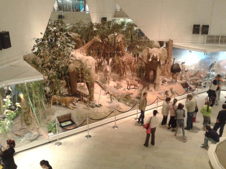 перечислены все в какой музей сходить с детьми начинающим перейти