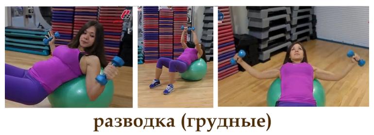 Программа тренировок в спортзале для беременных 26