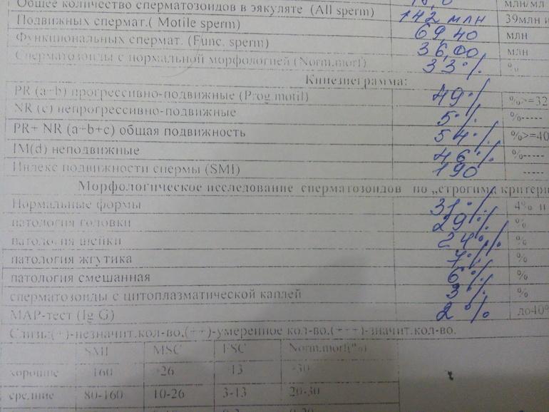 spermogramma-s-morfologiey-v-orenburge