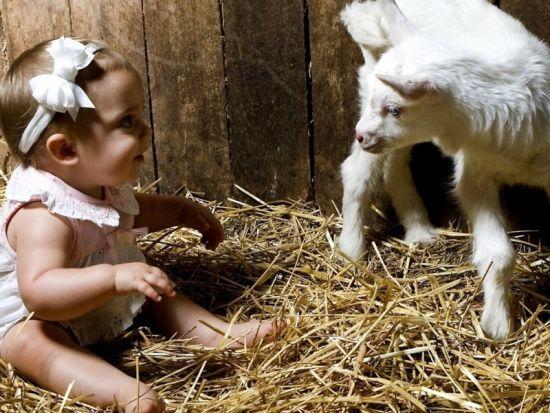 Гороскоп коза-ребенок
