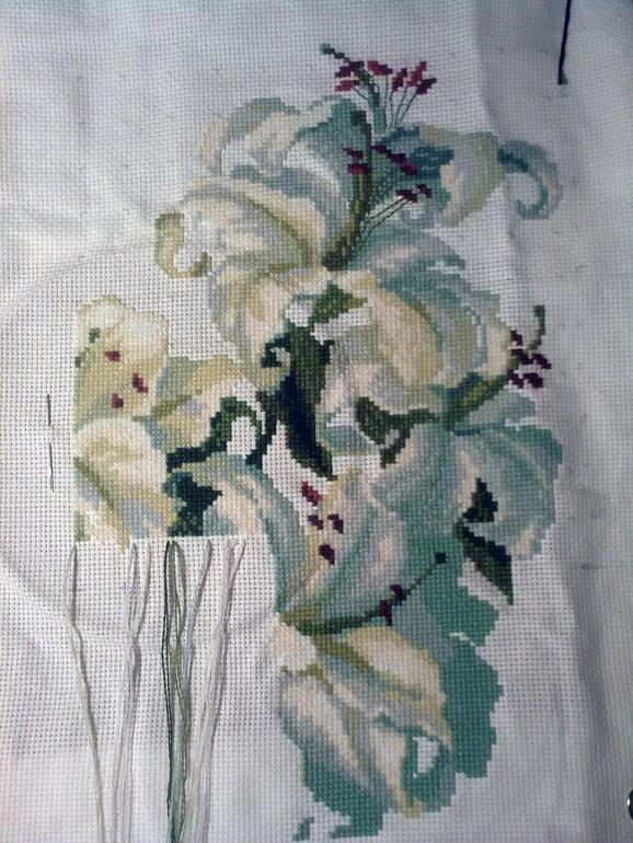 Схема для вышивки лилии риолис