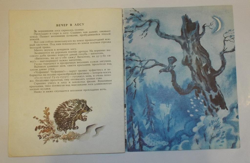 Соколов-Микитов Весна в лесу Худ. Фролов 1982