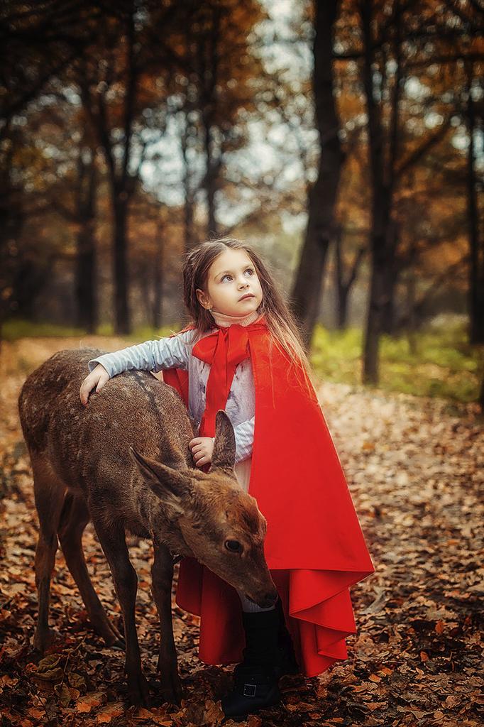 Фотопрект Сказка старого леса с олененком