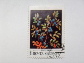 Марка 6к 1982 год СССР Голубика