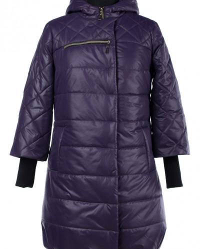 04-1680 Куртка демисезонная (Синтепон 150) Плащевка Черника