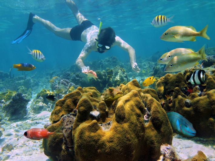 Развлечения и отдых в стране Мексика как весело провести каникулы в Мексике