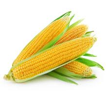 Ваш малыш по размерам словно кукуруза