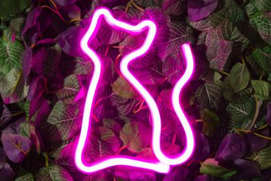 """Светильник настенный неоновый 17*1,5*23,2 см """"Кошка розовая"""""""