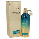 Day Dreams Perfume by Montale  100мл