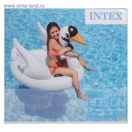 """Игрушка для плавания """"Лебедь"""", 130 х 102 х 99 см, от 3 лет"""