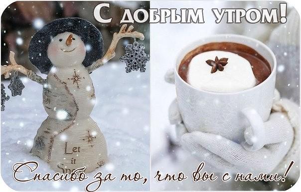 Днем, прикольные зимние картинки с добрым утром и хорошего настроения